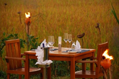 Dining-Amidst-The-Paddy (Copy)