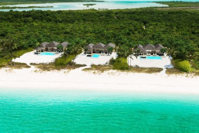 parrot cay 4