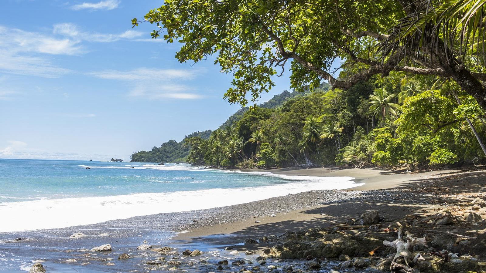 Beach and jungle in Corcovado National Parc, Costa Rica