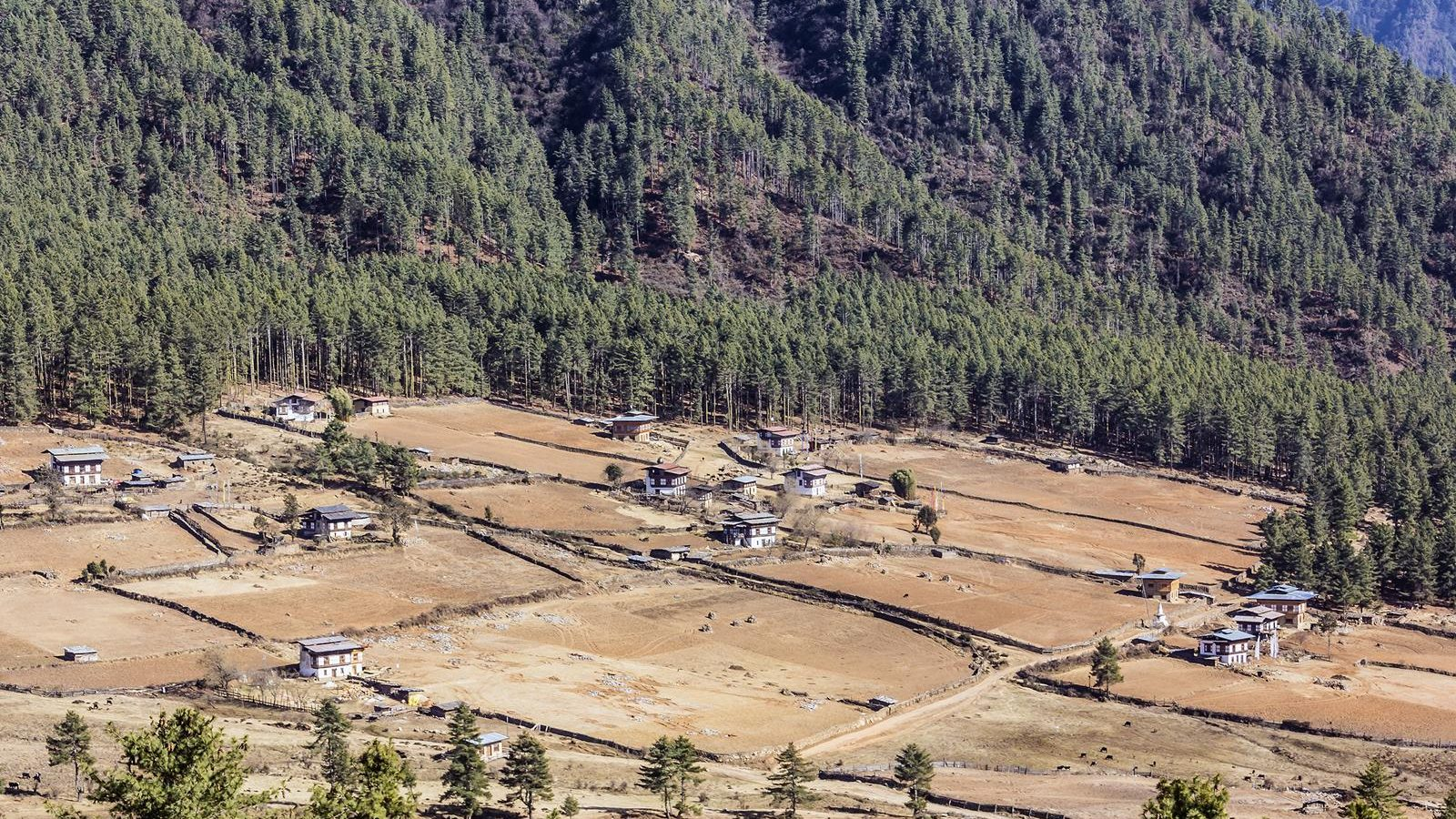 gangtey village is a beautiful village with a well known monastery in Bhutan.