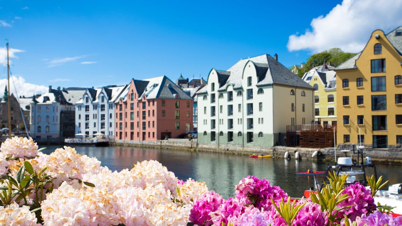 flowers growing at the streets of famous norwegian town Alesund