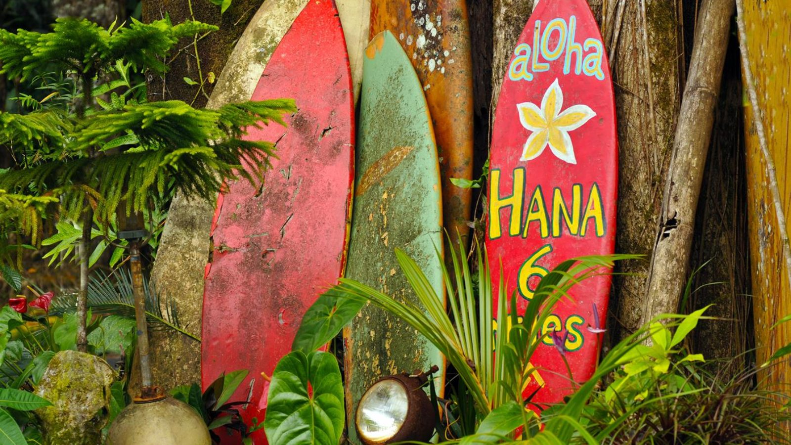 hawai_tablas_surf_hawai_estados_unidos_america